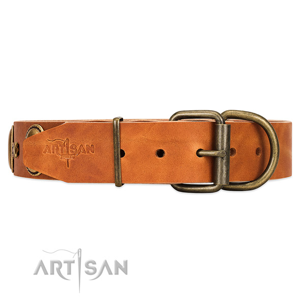 Adorned with unique plates and studs tan dog collar