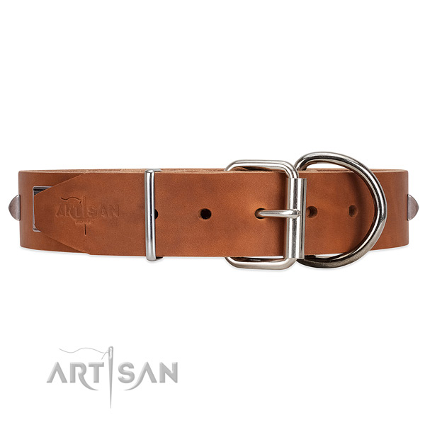 Easy to fix leather dog collar with chrome-plated hardware