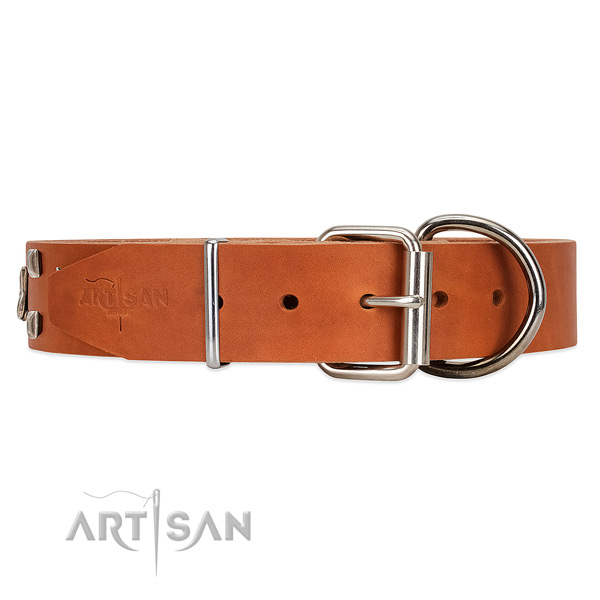 Wear-proof leather dog collar with traditional buckle