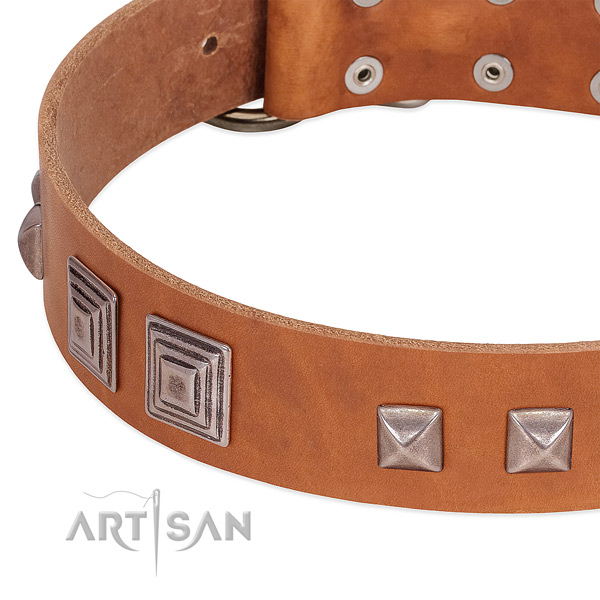 Dog collar with square studs for stylish canine