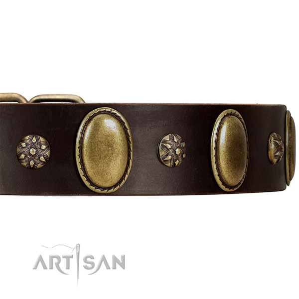 Daily Walking Dog Collar Decorated with Mix of Studs