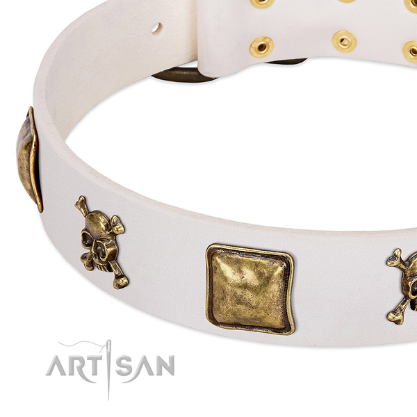 FDT Artisan dog collar adorned with skulls and crossbones in combination with squares