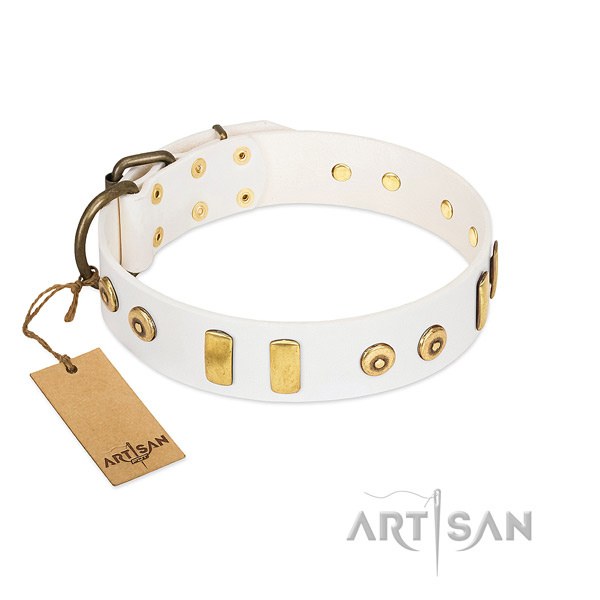 Designer White Leather Dog Collar Adorned with Studs and Plates