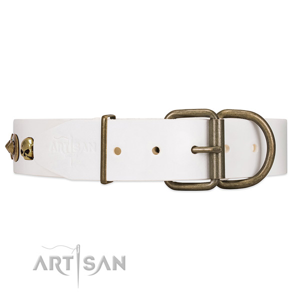 White dog collar with old bronze-like hardware