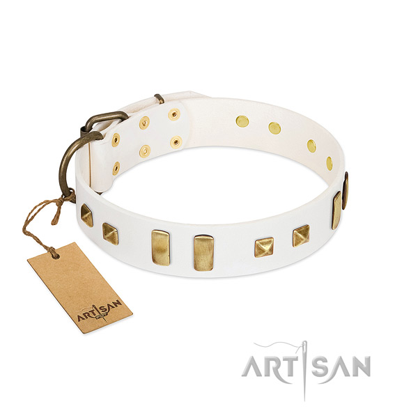 Designer White Leather Dog Collar Adorned with Plates and