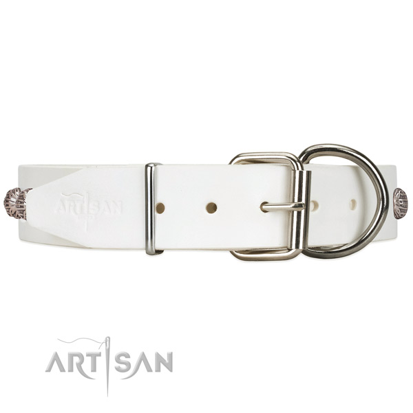 White dog collar with silver-like hardware for daily use