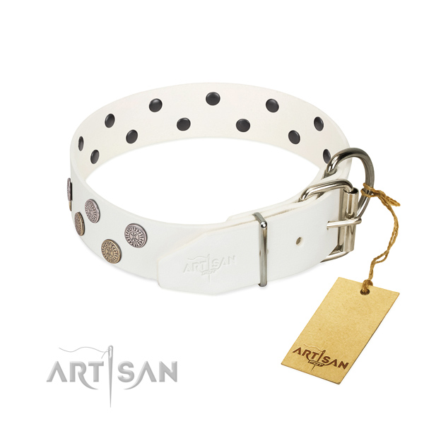 extra strong leather dog collar with chrome plated buckle