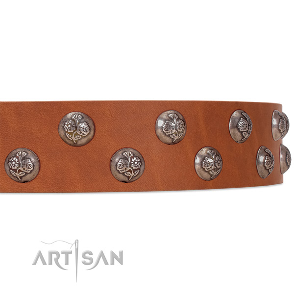 Tan leather FDT Artisan dog collar with chrome-plated flowers