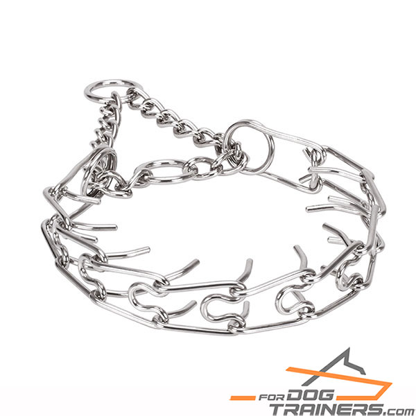 Chrome plated dog pinch collar for training