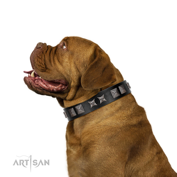 Extraordinary walking black leather Dogue de Bordeaux collar with cool decorations