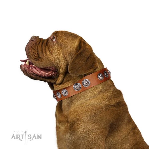 Adjustable full grain natural leather Dogue de Bordeaux collar with adornments