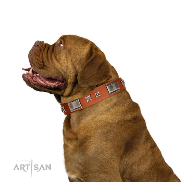 Adjustable leather Dogue de Bordeaux collar for walking
