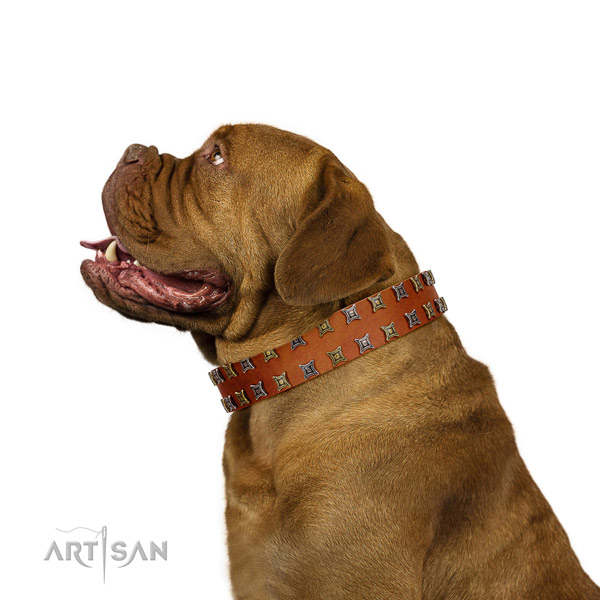 Dependable Dogue de Bordeaux Artisan leather collar for