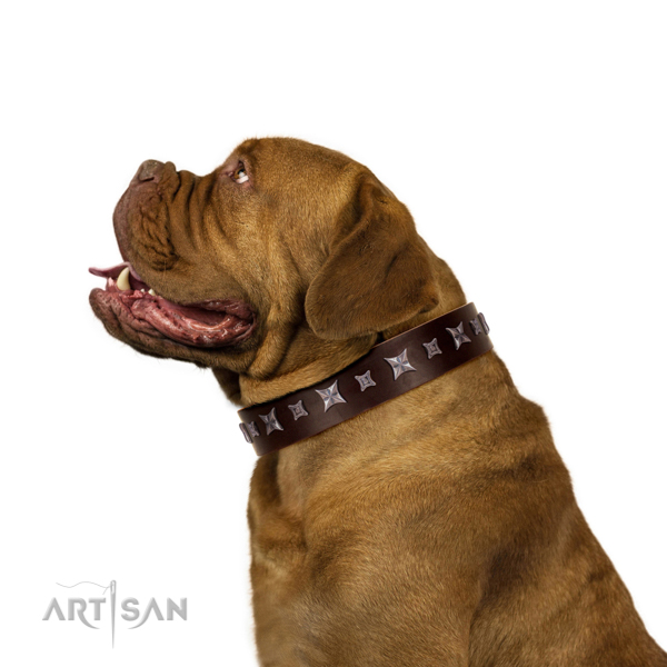 Handcrafted made Genuine Leather Dogue de Bordeaux Collar