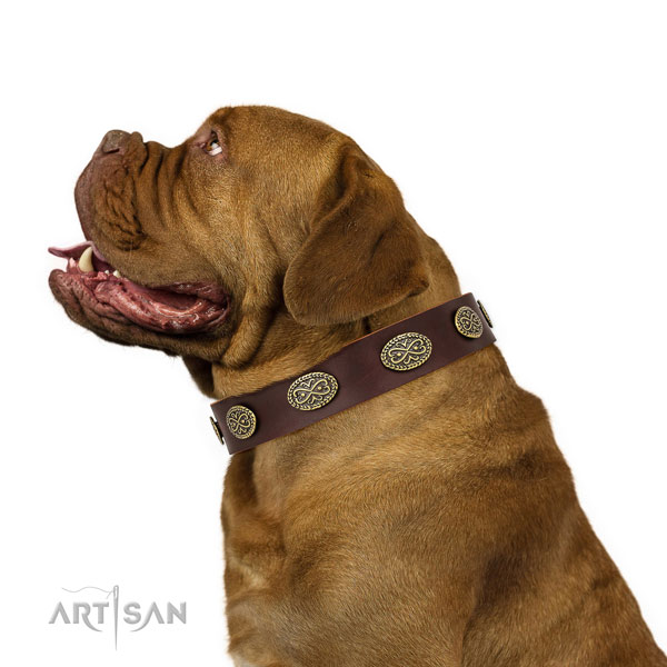 Dogue de Bordeaux stylish walking dog collar of flexible genuine leather