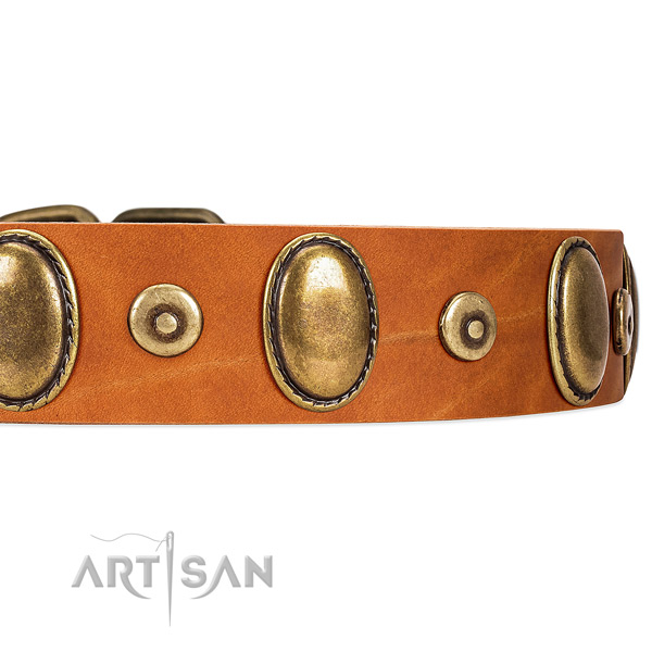 Super Stylish Leather Dog Collar with Reliable Fittings