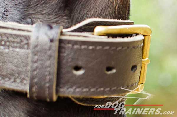 Extra wide 2 ply leather collar for Doberman