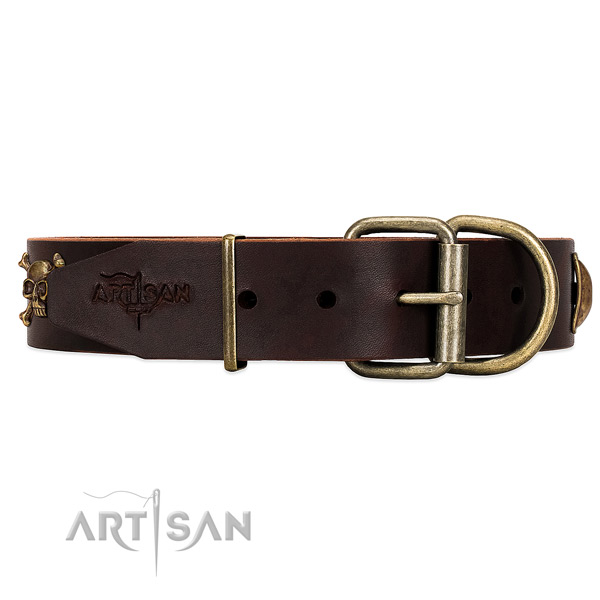 Perfect Fit Brown Leather Dog Collar with Classic Style Buckle