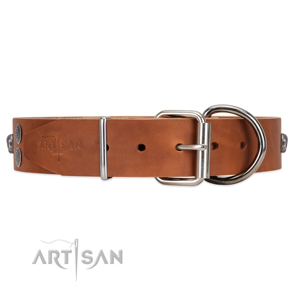 Easy to Fit Leather Dog Collar with Sturdy Buckle