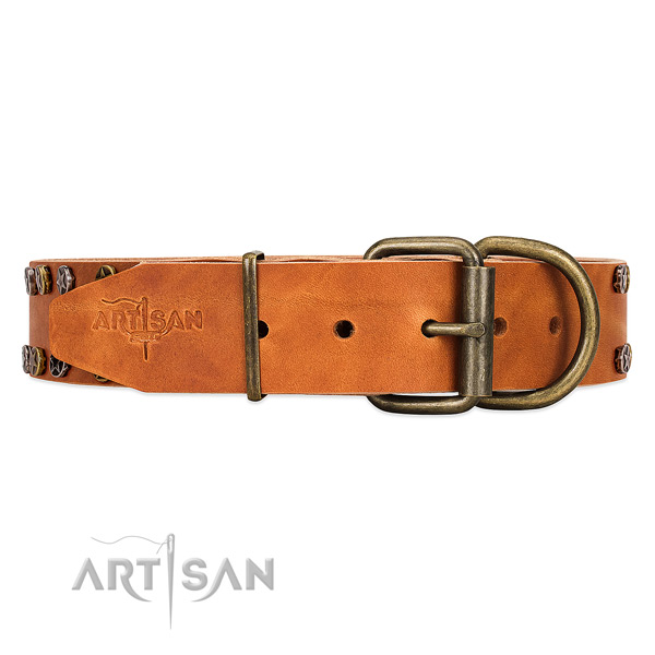 Adorned with Stars Tan Leather Dog Collar with Firm Buckle for Daily Wear