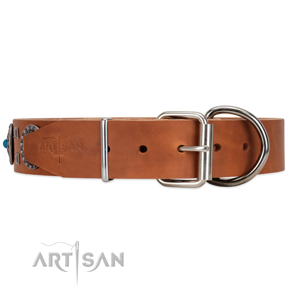 Tan leather dog collar with rust-resistant buckle closure