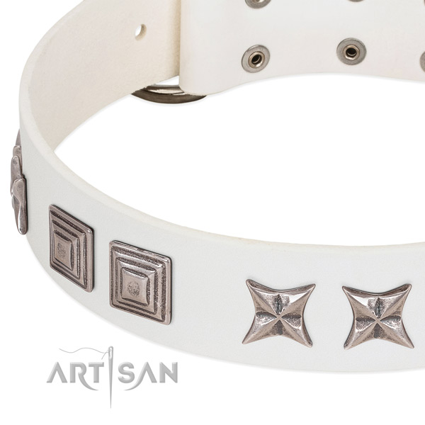 Extraordinary dog collar with combo of stars and plates