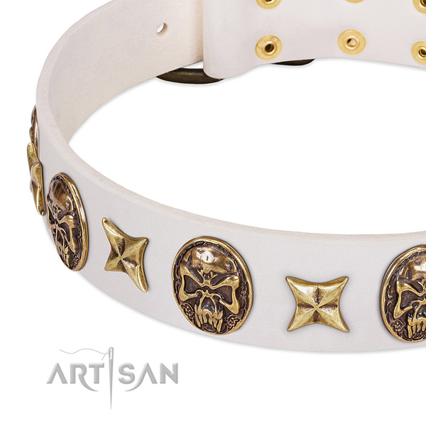 Chic White Leather Dog Collar Adorned with Gold-like Medallions