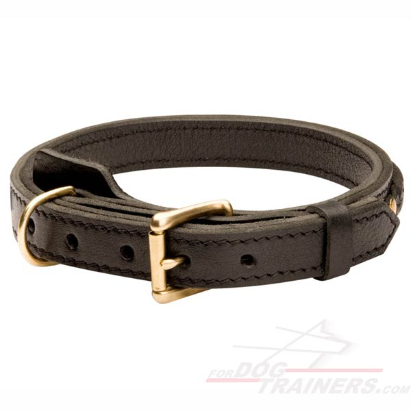 Multipurpose Leather Collar