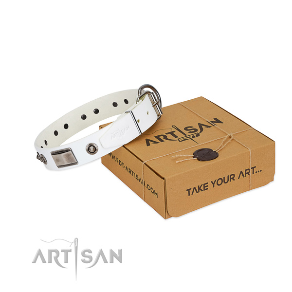 White leather dog collar for pleasant pastime