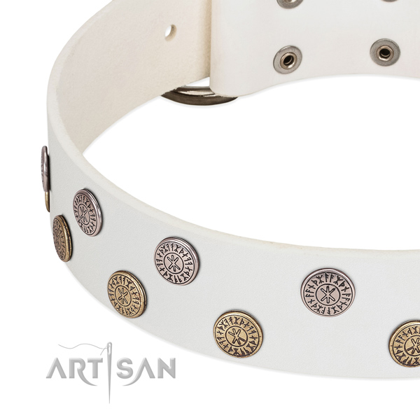 White leather dog collar with stylish decorations
