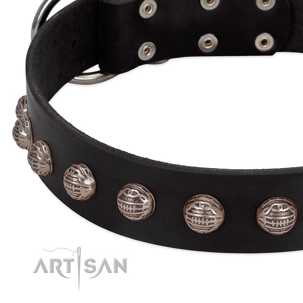 Black stylish leather dog collar with modern decorations