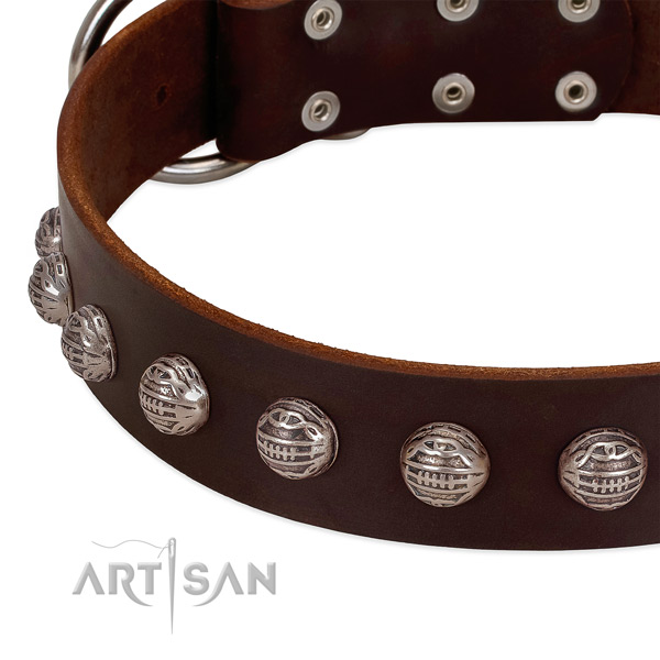 Brown leather dog collar with cool decorations