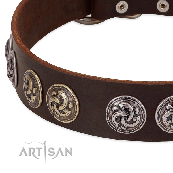 Uniquely Designed Dog Collar Adorned with Rustproof Fittings
