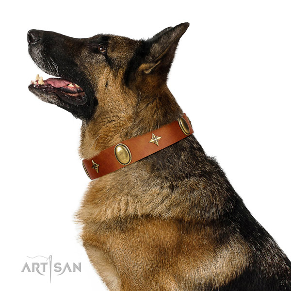 Tan leather German Shepherd collar made to last