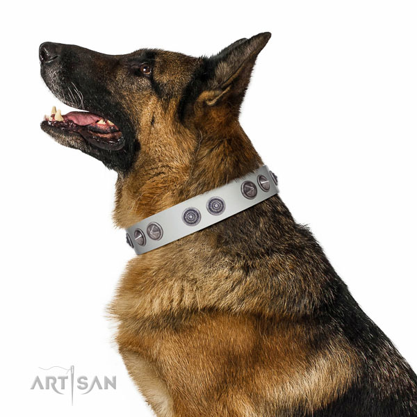 Top quality leather collar for owners who care