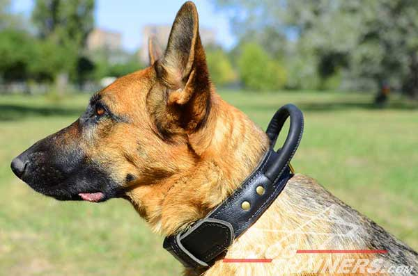 Leather Training German Shepherd Collar Ergonomic Handle Durable