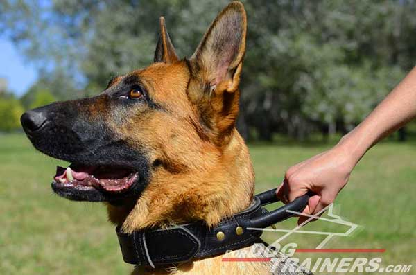 Easy-Control German Shepherd Collar Leather Handle Durable