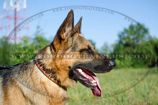 Hand Painted German Shepherd Collar Leather Flames Image