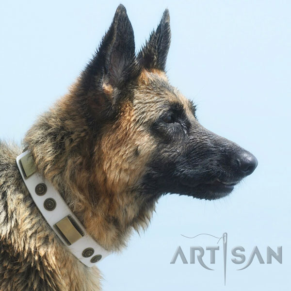 Fashionable Leather German Shepherd Collar Suits for Water Games
