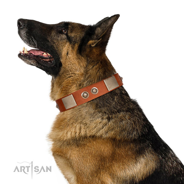 Tan Leather German Shepherd Collar for Perfect Look