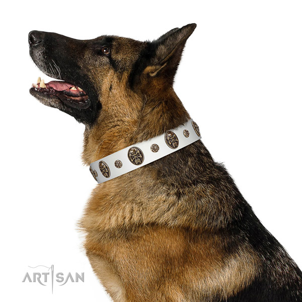 Premium quality German Shepherd Artisan leather collar for comfortable wear