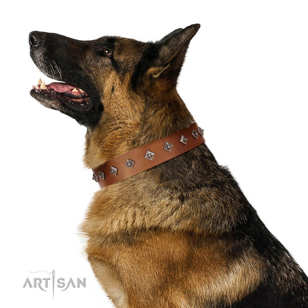 Top-notch quality leather German Shepherd