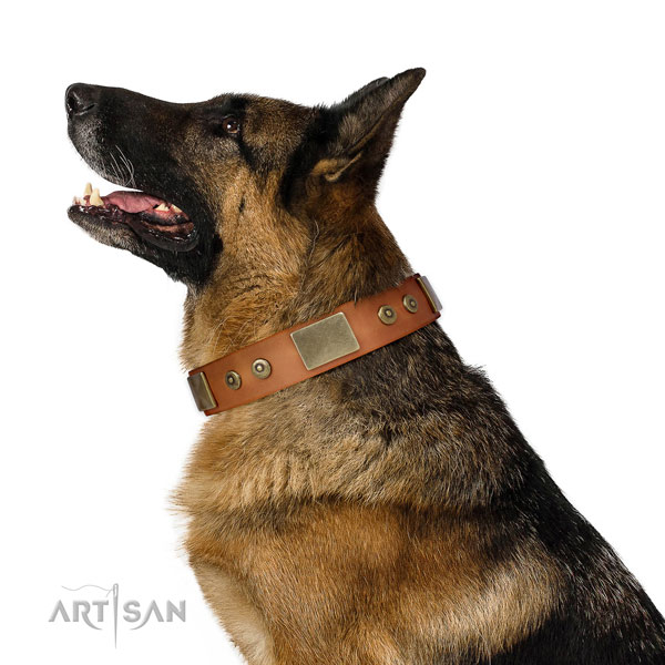 German Shepherd easy wearing dog collar of soft genuine leather