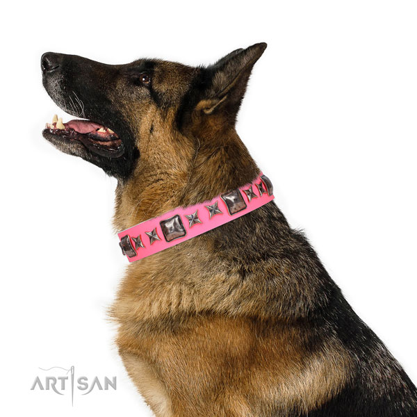 German Shepherd extraordinary full grain natural leather dog collar with adornments