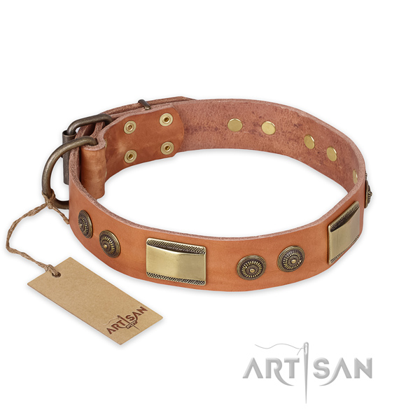 Designer Leather Dog Collar of Tan Color