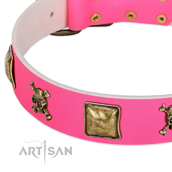 FDT Artisan dog collar adorned with skulls and crossbones