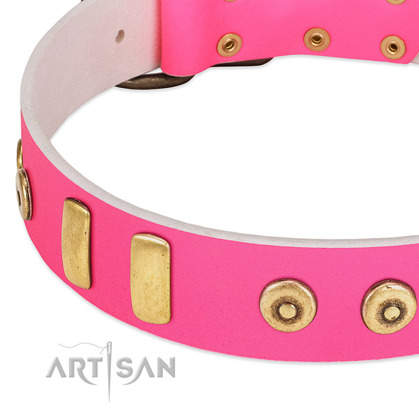 Designer pink dog collar with plates and dotted studs