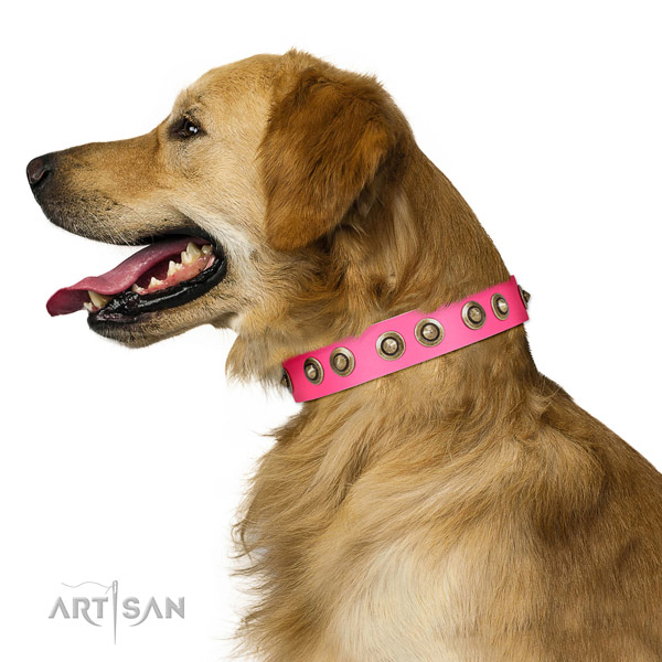 FDT Artisan Pink Leather Golden Retriever Collar with Stylish Medallions