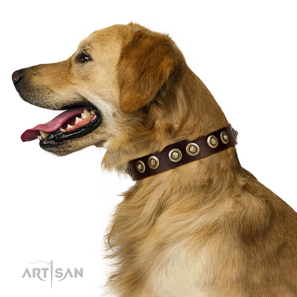 Pleasant to the skin leather Golden Retriever collar for daily use