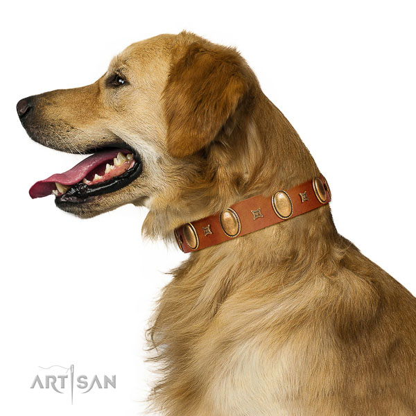 Wear-proof leather Golden Retriever collar for